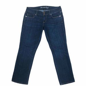 American Eagle Artist Crop Womens Cropped Jeans 8